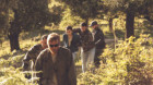 Premiere cinematografice. Mafia… corsicană