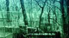 """Galeria de artă 'Mariana Berinde'.""""Ice Lands"""", reîntâlnirea cu arta pictorului Aurel Ţigoan"""