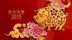 Anul Porcului, marcat de tulburări şi de încetinire economică