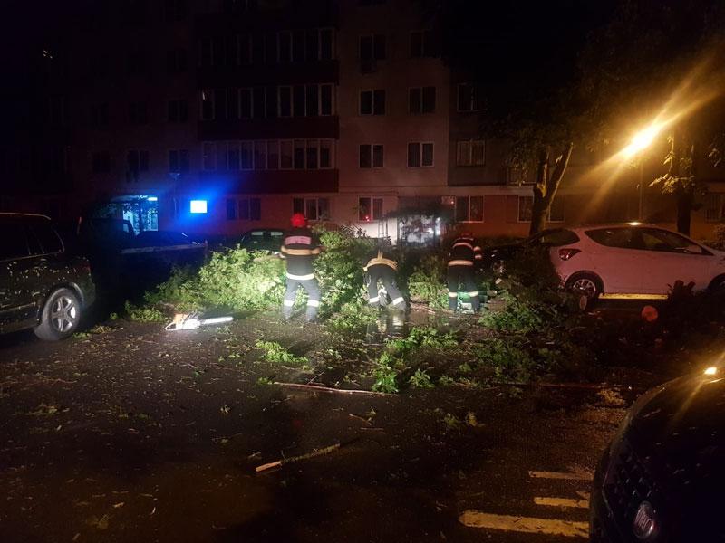 Furtuna-Cluj-1