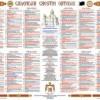 Patriarhia Română: Calendarele ortodoxe autentice se găsesc numai în biserici, mînăstiri şi magazine bisericeşti