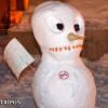 A 37-a zi de proteste la Cluj: Protest cu oameni de zăpadă