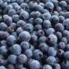 Ciuperci şi fructe  de pădure confiscate de poliţişti