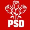 Ultimele detalii ale strategiei PSD în campania pentru prezidenţiale vor fi stabilite la Tulcea