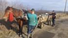 Primarii din microregiunea ,, Cîmpia Transilvaniei'' se plîng de dublarea preţurilor serviciilor de salubritate