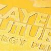 Înscrieri la Premiul Zayed pentru Viitorul Energetic