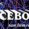 În buzunarul de la piept, FACEBOOK sau lumea virtuală la purtător