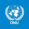 Raport ONU: Toate părţile implicate în conflictul din Libia, responsabile de crime de război