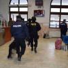 IPJ Cluj: Peste 17.000 de infracţiuni sesizate în 2015, la nivelul judeţului