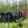 La Mociu: Pădurea Lată a fost… întinerită