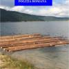 Pe lacul Beliş-Fîntînele şi pădurea se… plimbă cu barca