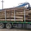 Material lemnos în valoare de peste 7.000 lei, confiscat de poliţiştii din Beliş, Mărgău şi Mărişel