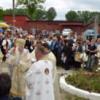 Flori de har în Dealul Florilor din Dej, la Sărbătoarea Sf. Anton