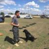 Vameşii apelează la câini pentru combaterea traficului cu țigarete şi droguri