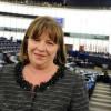 Eurodeputatul Norica Nicolai: Singura soluţie pentru UE este să îşi întărească coeziunea internă
