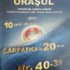 Aniversări 2016/2017. ORAŞUL – 10 ani de revistă. Fundaţia Culturală CARPATICA – 20 de ani