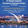 Karate / Cluj-Napoca, capitala europeană a artelor marţiale