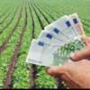 Bani europeni pentru fermierii români