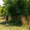 A început curăţenia în Parcul Feroviarilor