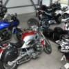 Afaceri în creştere în comerţul cu autovehicule și motociclete