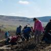 Acțiune de voluntariat pentru împădurirea a 10 hectare de teren