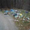 O nouă acţiune de ecologizare derulată de Consiliul Judeţean în zona lacului Tarniţa