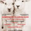 Fundaţia Culturală 'Carpatica' & Academia de Muzică 'Gheorghe Dima'. Un titlul pe cât de ofertant, pe atât de atrăgător, 'Bastien şi Bastienne'