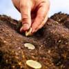 Fonduri europene pentru fermieri prin măsurile de agro-mediu şi climă