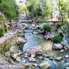 Acţiune de ecologizare în Cheile Turzii