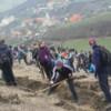 Aproape opt sute de tineri au plantat puieţi pe coastele Triteniului