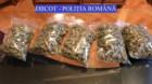Alarmant! Judeţul Cluj, depăşit doar de Bucureşti la  trafic de droguri
