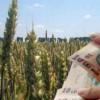 Fermierii pot depune Cererile Unice de Plată până în 15 mai
