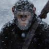 ,,War for the Planet of the Apes'' (2017) – incasari de 490 de milioane de dolari la nici un an de la lansare