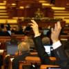 Camera Deputaţilor:Moţiunea simplă pe Economie – respinsă
