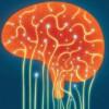Scăderea tensiunii arteriale reduce riscul de declin cognitiv