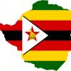 Zimbabwe: Emmerson Mnangagwa, ales preşedinte, o victorie imediat respinsă de opoziţie