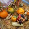 Ziua Recoltei va fi sărbătorită duminică la Dej