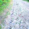 Drumul DJ 107 T dintre Măguri-Răcătău şi Mărişel, în stare dezastruoasă