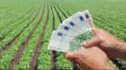 Se fac plăţi pentru sprijinul cuplat în sectorul vegetal. Ajutoare de pînă 7.600 euro/ha