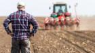 Daea: Guvernul va da la timp subvenţiile pentru fermieri
