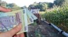 APIA dă bani pentru motorina agricolă