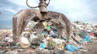 Undă verde pentru licitaţia privind transportul deşeurilor din judeţul Cluj
