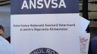 Acces restricţionat la Autoritatea Sanitară Veterinară