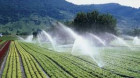 Agenţia de Îmbunătăţiri Funciare afirmă că va asigura apa pentru irigaţii