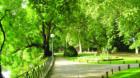 Undă verde pentru parcul din cartierul Zorilor